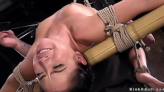 Babe in back arch hogtie tormented